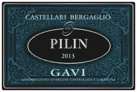 Gavi Pilin 2014