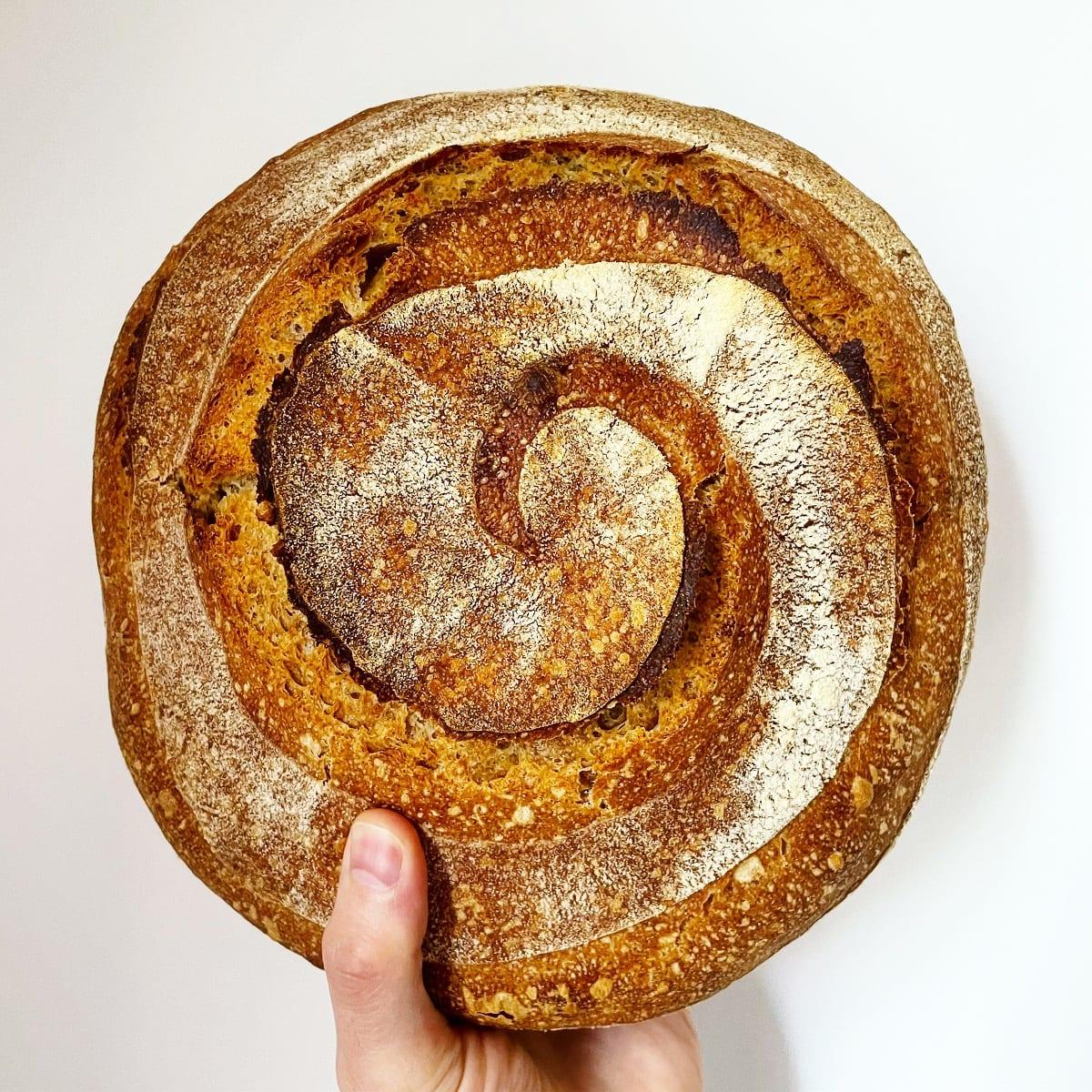 Pane di saragolla