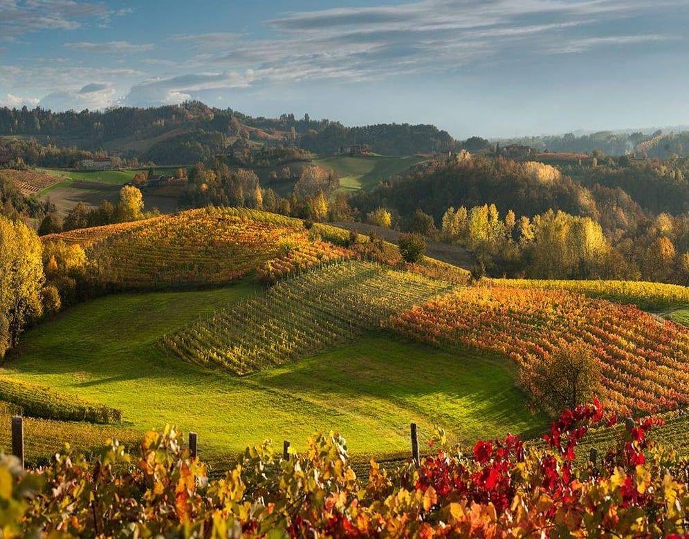 Colline delle Langhe in autunno
