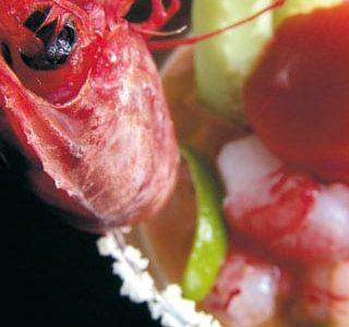 """Cocktail di gamberi rossi con """"carosello"""" e granita di Bloody Mary"""