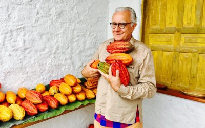 alain ducasse sceglie le fave di cacao