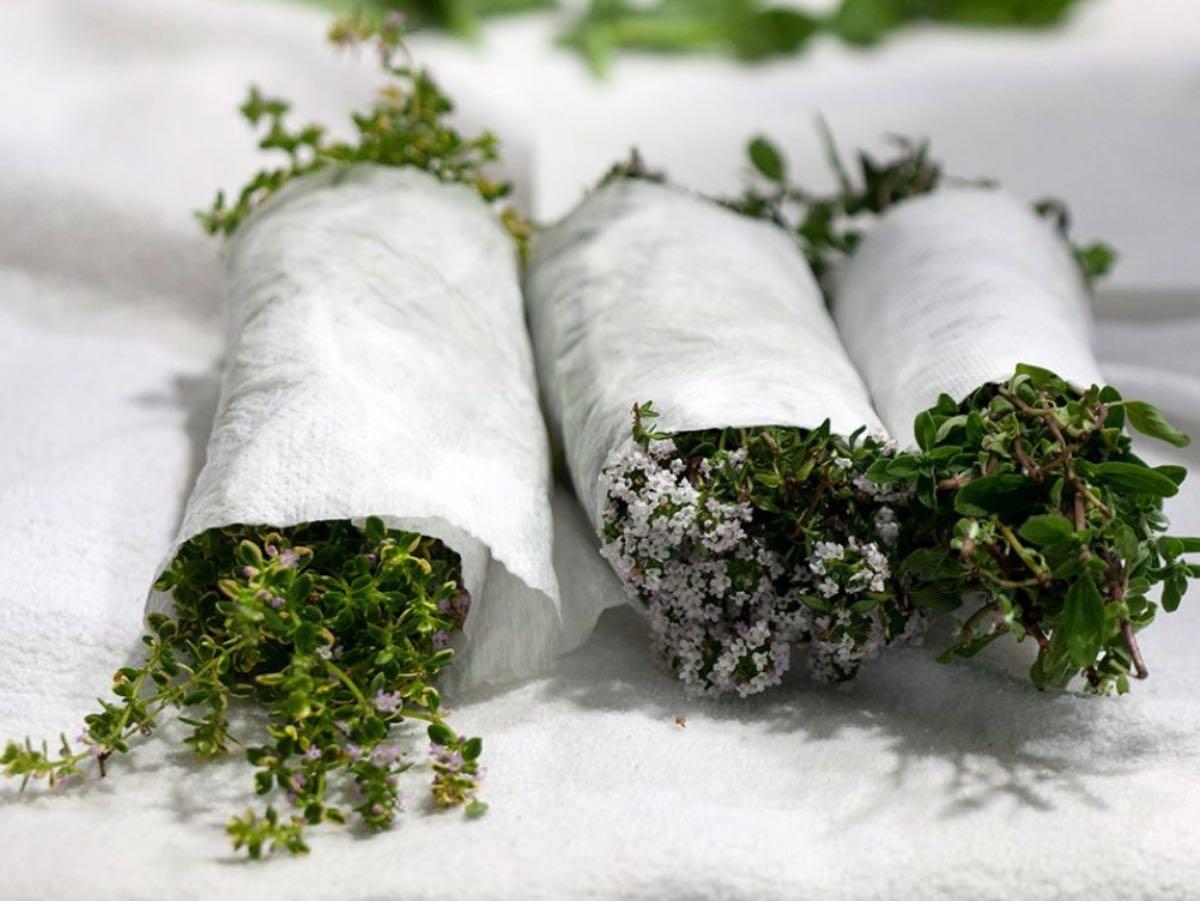 Le erbe aromatiche di Piazza Duomo