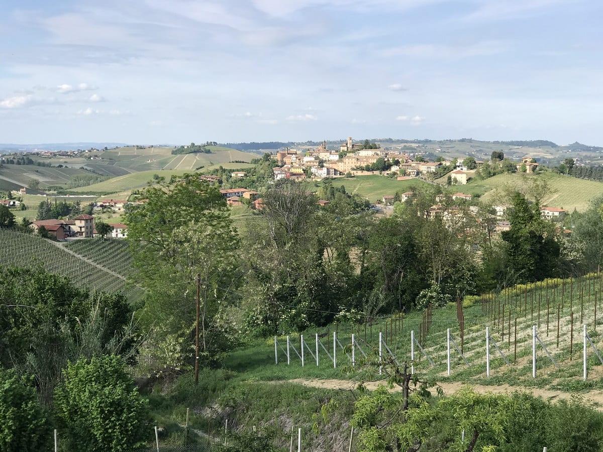 Vista di Neive dalle vigne