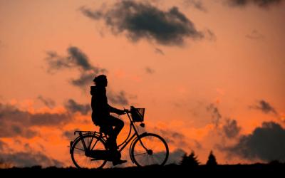Dalla vendemmia attiva al well-being, le nuove frontiere del turismo