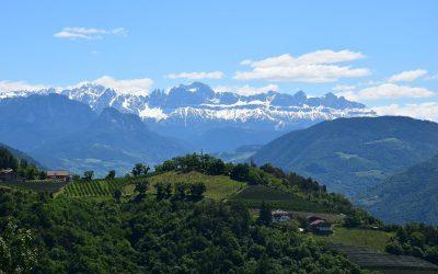Vista sui vigneti e le montagne altoatesine