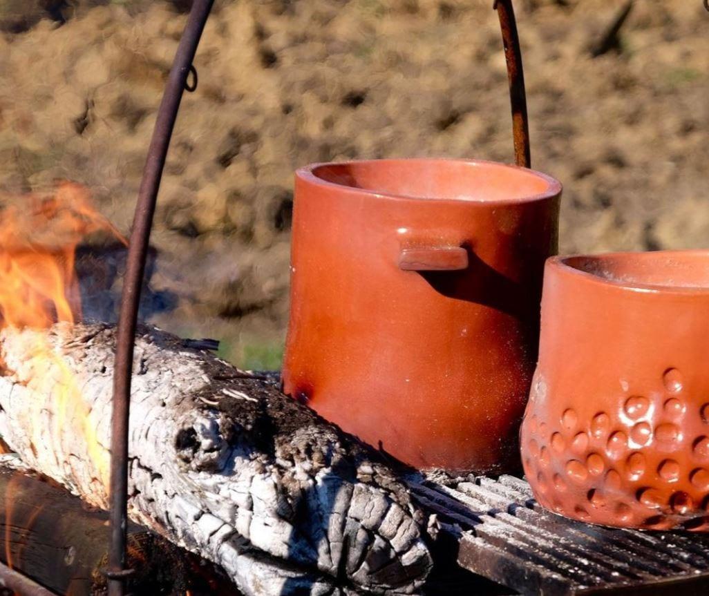 Cocci sul fuoco alla Fattoria Sardi