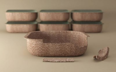 Vaschette in buccia di grano