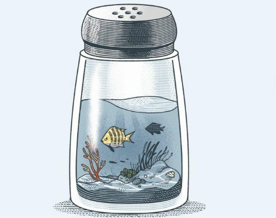 Un porta sale con dentro acqua e pesci. disegno di Marcello Crescenzi