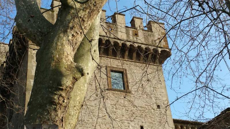Torri di guardia del Castrum Borghetti
