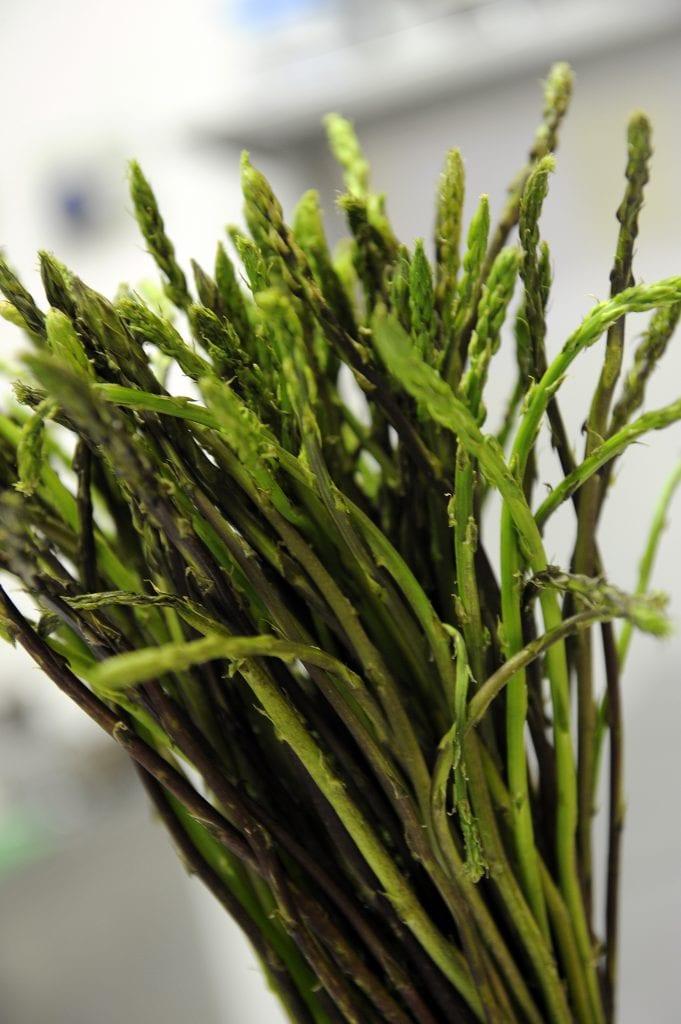 Un mazzetto di asparagi selvatici