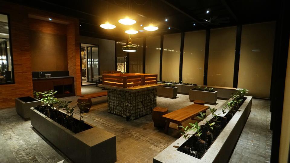 La nursery di Starbucks, con le piantine di caffè in crescita