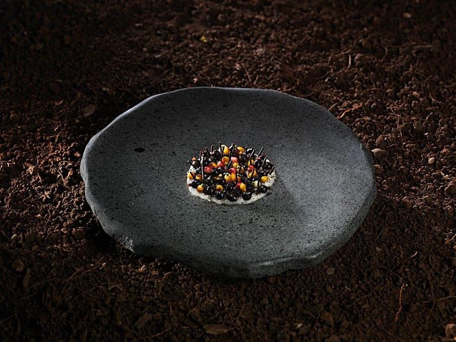 Un piatto di Rodolfo Guzman, su pietra nera e terra