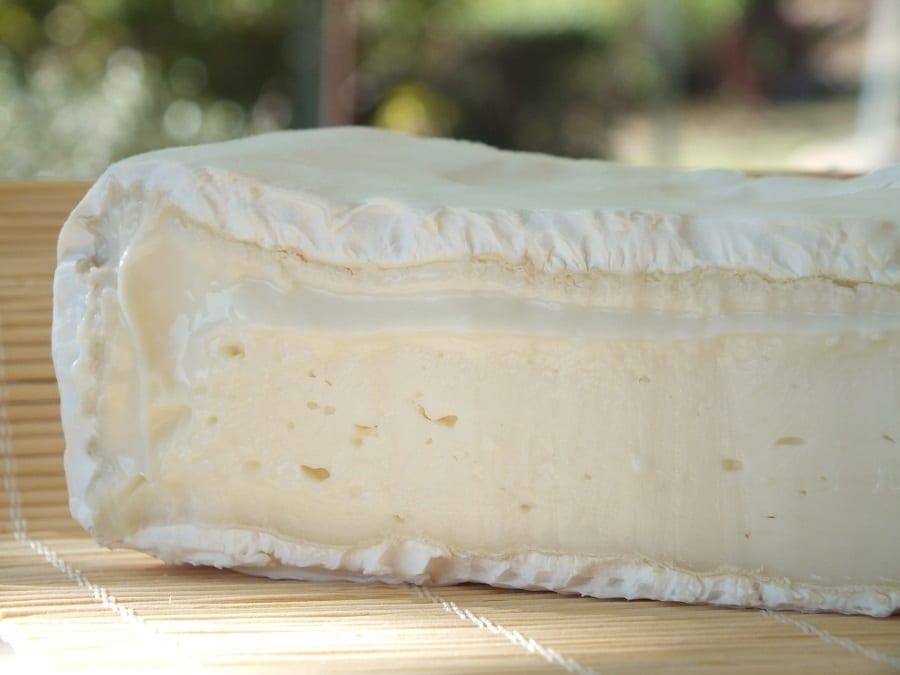 primo piano di un formaggio di capra a pasta morbida e crosta fiorita