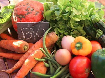 prodotti alimentari bio, ortaggi e uova