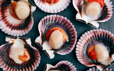 Come scegliere il pesce per le feste e i segreti di Beppe Gallina