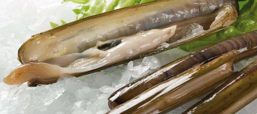 I canolicchi del Consorzio Pescatori di Goro
