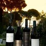 Estates Wines_018