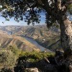 030 Il fiume Douro attraversa la regione vinicola