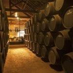 133 Botti di Porto nella Graham e dietro la vetrata il ristorante Vinum