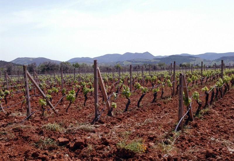 Santadi provincia di_Carbonia-Iglesias nel_Basso_Sulcissardegna