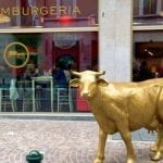 04_agri_hamburgeria