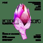 panem_circenses_fondi_carciofo