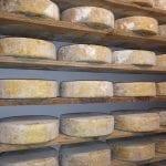 latteria Perenzin formaggi