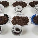 caff umami