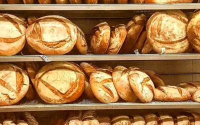 Panifici Emilia Romagna: forno Brisa