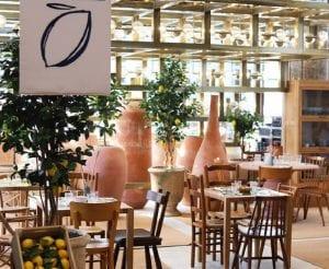La sala del Cafè Citron alle Galeries Lafayette, con vasi in terracotta e piante di limoni