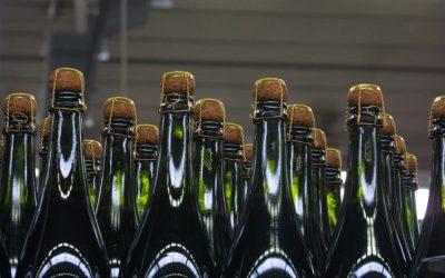Bottiglie di lambrusco