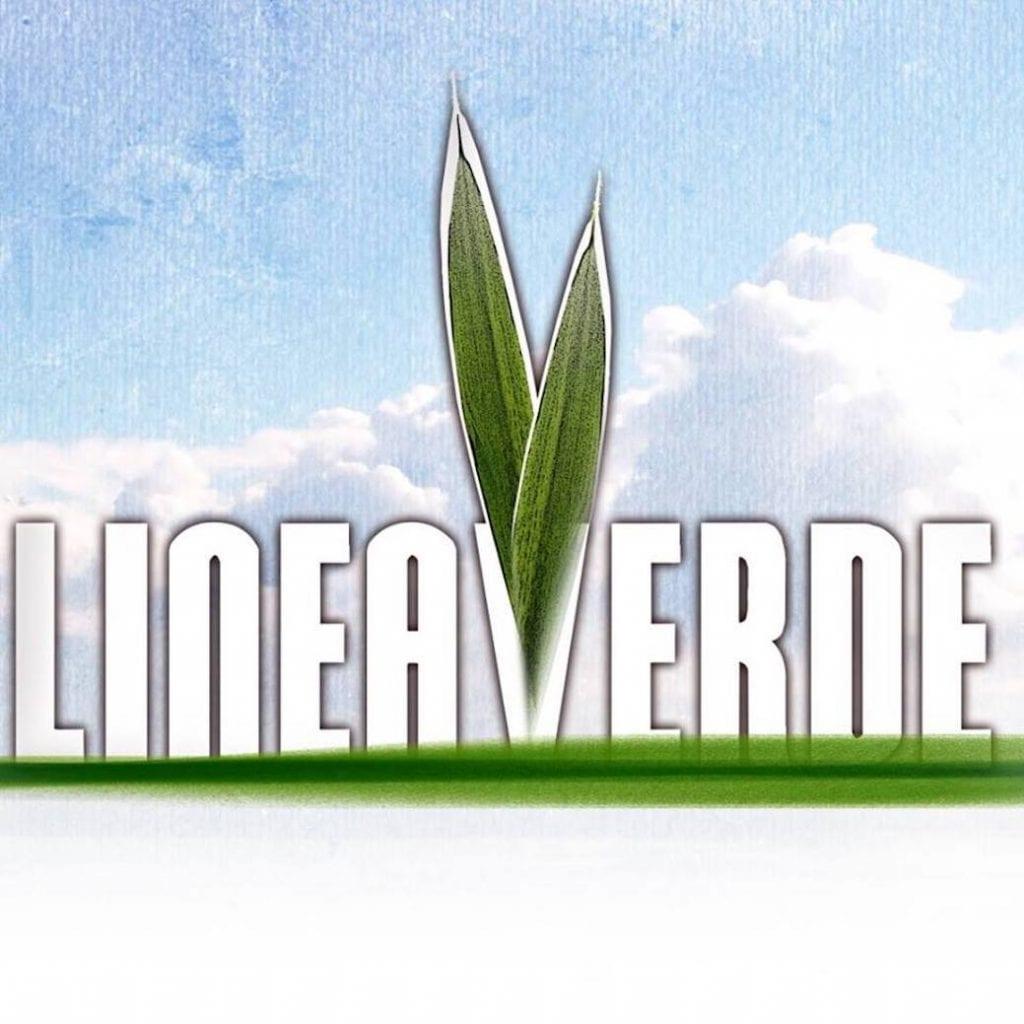 Lineaverde il logo