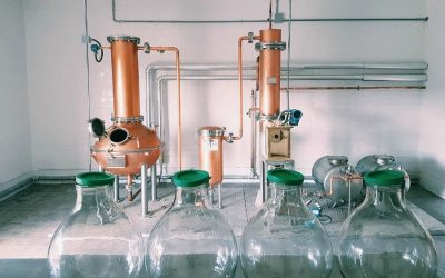 Peter in Florence, a distillery entirely dedicated to gin