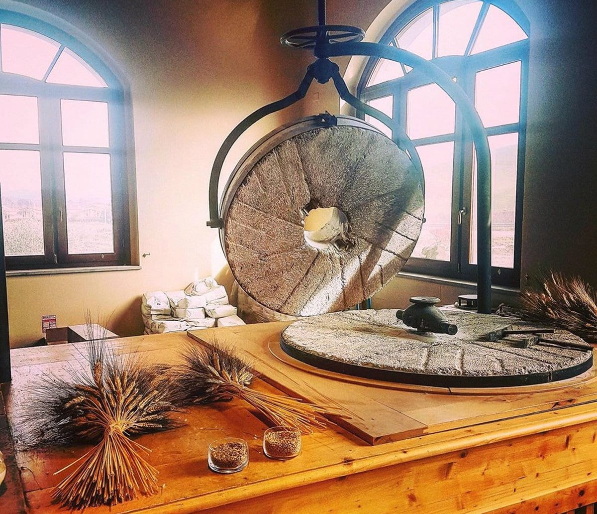 mulinum3 Mulinum a San Floro. La startup agricola che produce grano, farina, pane e pizza