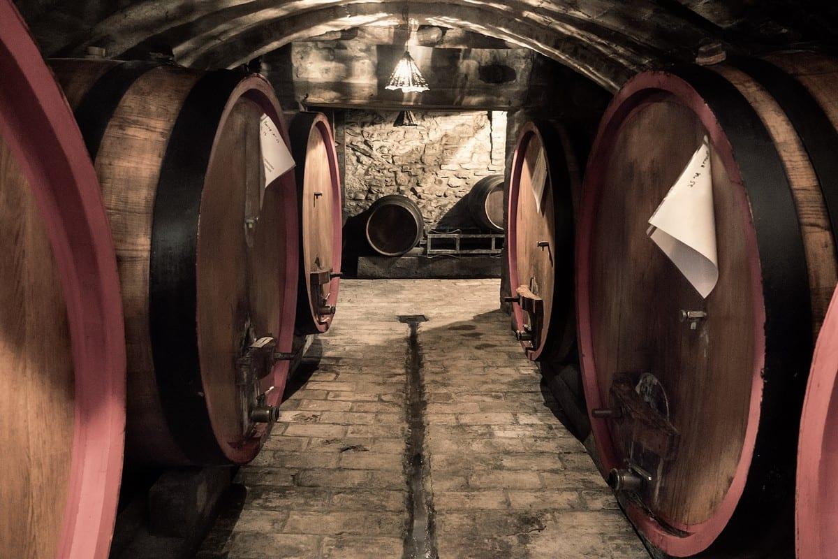 Predappio vino - Nicolucci