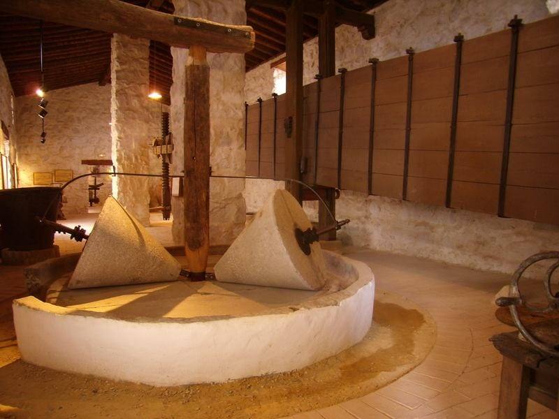 Olive oil culture museum