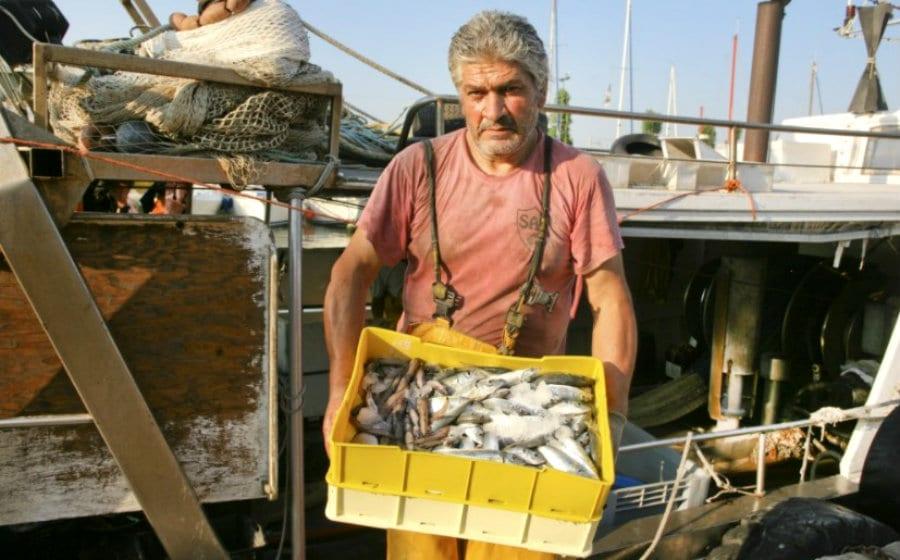 Pescatore dell'Organizzazione Produttori Bellaria Pesca