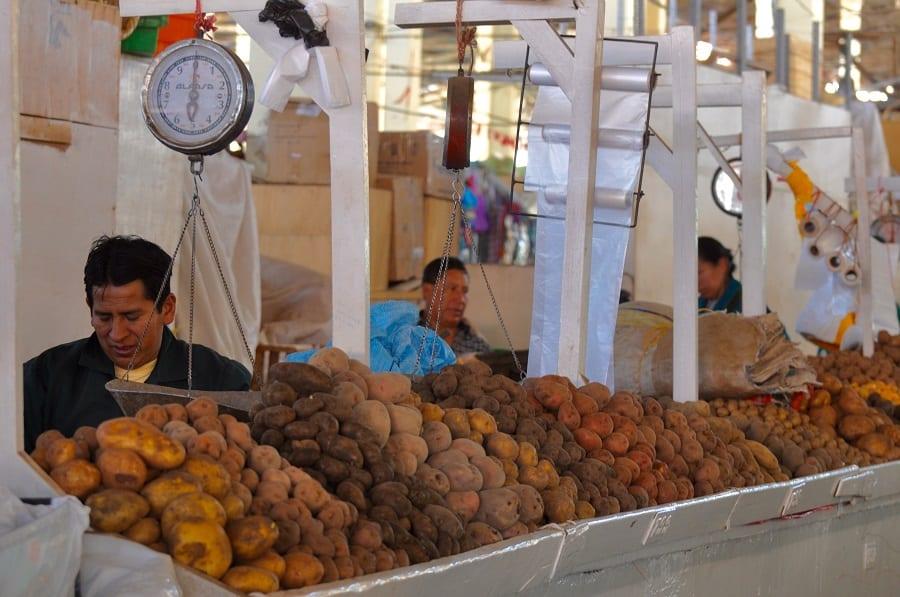 perù. varietà di patate