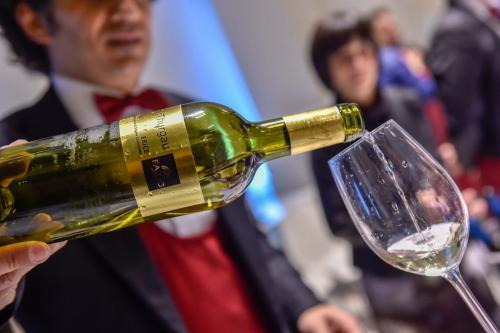 Anteprima Fiere Vino 2019 - Wine Tasting Roma