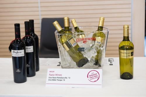 Anteprima Fiere Vino 2019 - Wine Tasting Cesena