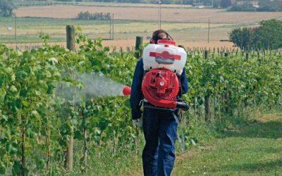 Riuscirà la viticoltura italiana a fare a meno del rame?