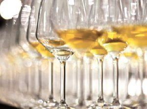 bicchieri di ribolla
