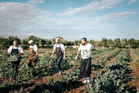 Chef in campo per la raccolta dei cavoli in Puglia per NoMenu alle Cantine San Marzano