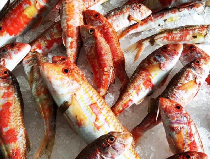 Ristoranti Di Pesce A Torino 17 Indirizzi Gambero Rosso