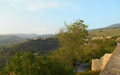 Trebbiano SPoletino e Trevi