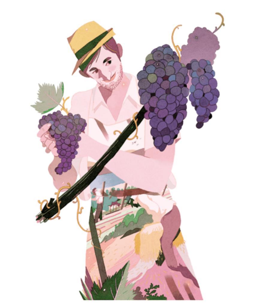 disegno di Gianluca Folì per Valtènesi. unuomo con i grappoli di uva presentatta a Italiain Rosa 2019