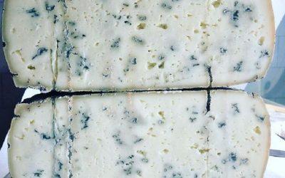 Una forma di erborinato di pecora Borgognone tagliata a metà, con le parti sovrapposte