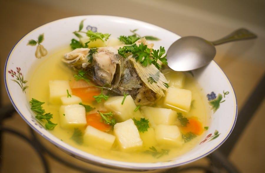 zuppa di pesce russa